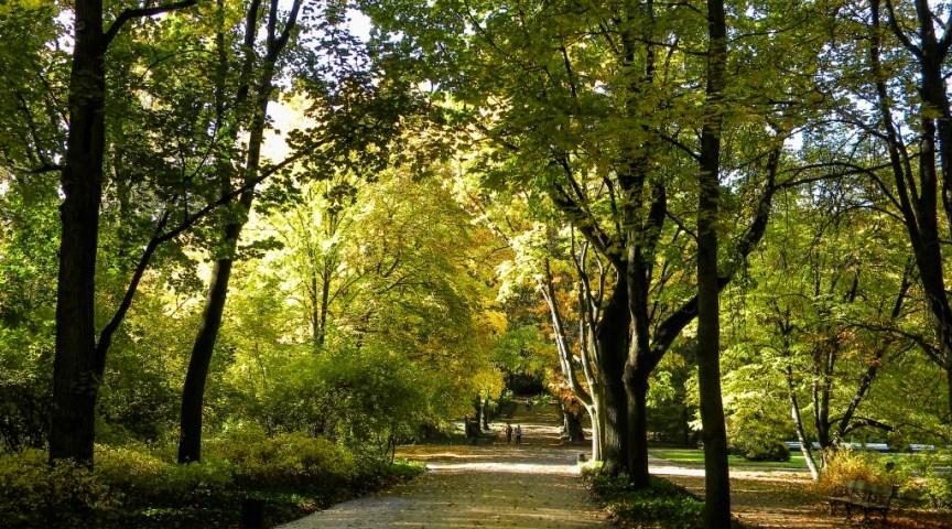 Парк лазенки в Варшаве