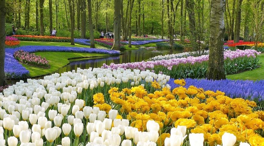 Парк Кёкенхоф, Ниедрланды