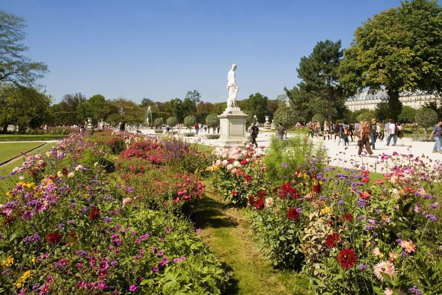 стиле париж сад тюильри фото фотографировать