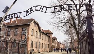 Превью фото о Аушвиц-Биркенау (Освенцим)