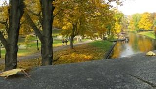 Превью фото о Парке Бастионная Горка