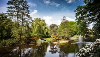 Превью фото о Ботаническом саде Вроцлавского университета
