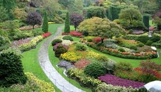 Превью фото о Ботаническом саде