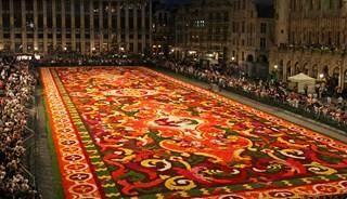 Превью фото о Цветочном ковре