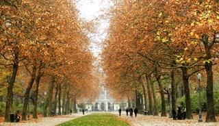 Превью фото о Брюссельском парке