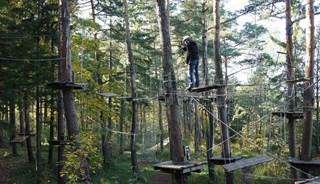 Превью фото о Веревочном парке