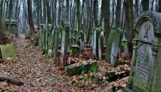 Превью фото о Еврейском кладбище