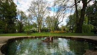 Превью фото о Саде Hofgarten