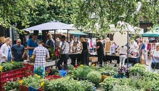 Превью фото о Фермерском рынке Kalnciema
