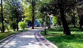 Превью фото о Мариинском парке