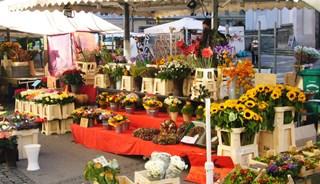 Превью фото о Рынке Grunmarkt