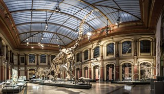 Превью фото о Музее естествознания