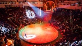 Превью фото о Национальном цирке Украины