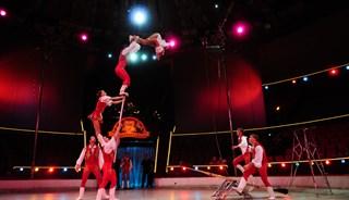 Превью фото о Цирке
