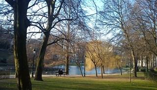 Превью фото о Парке Леопольд