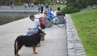 Превью фото о Парке Pole Mokotowskie