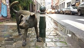 Превью фото о Памятнике Писающая собачка