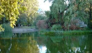 Превью фото о Парке Варошлигет