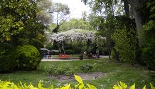 Превью фото о Венецианских садах