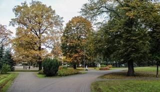 Превью фото о Верманском парке