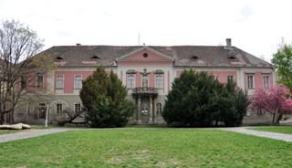 Превью фото о Дворце Зичи